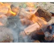 Beech Stick Wood | Wood Splits | Wood Splits